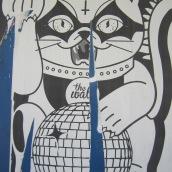 devil cat