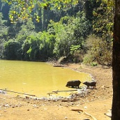 Dorf 2-Long Kodk _Wasserstelle
