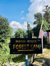 5-Pothana-Pitam Deurali-Kokar Forest Camp