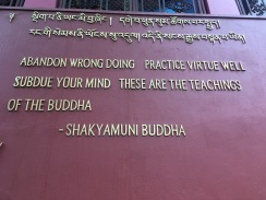 Helasi_Buddhas wisdom